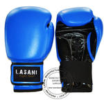 Leather Boxing Gloves - 101