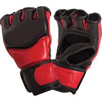 MMA Training Work Out Gloves