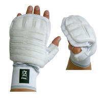 Kudo Sparring Elasticated Hand Mitt Gloves