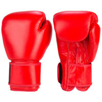 Standart Red Boxing Gloves -110