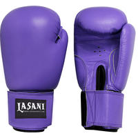 BASIC LEATHER BOXING GLOVES -103 PURPLE