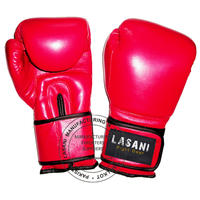 Pro Boxing Gloves - 107